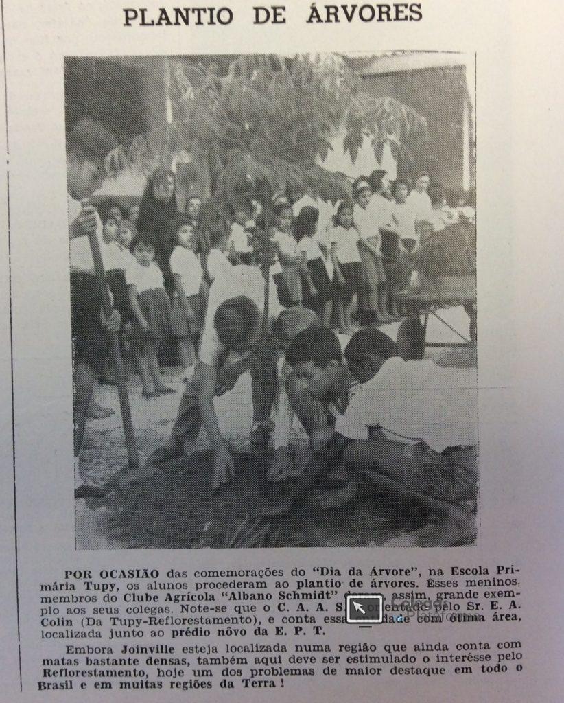 1963 nov Dia da Árvore II